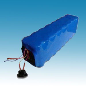 48V/10ah Lithium Iron Phosphate Battery Packs pictures & photos