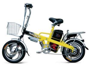 Electric Bike (FPE-009)