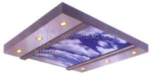 Nice Elevator Car Ceiling (HDHM-450) pictures & photos
