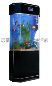 Acrylic Decoration Aquarium, Oblong Fish Tank, Decoration Fish Tanks (2m*1.3m*0.28m)