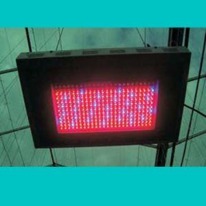 China 480w Led Grow Light 5w Bulbs Gl G 480w China Led