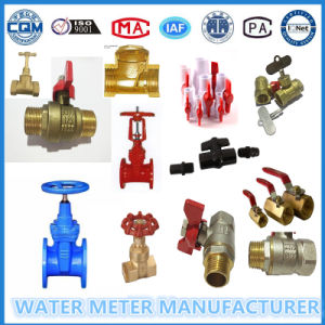 Brass Valves for Water Flow Meter pictures & photos