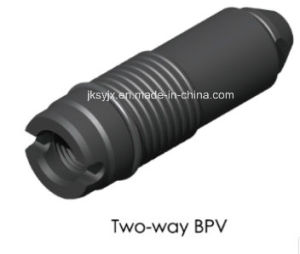 Two-Way Bpv for Wellhead pictures & photos