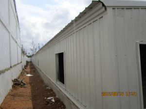Customized Modern Steel Structure House in Poultry Farm with Automatic Equipment pictures & photos