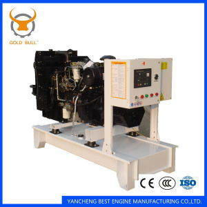 Ricardo Power Diesel Generator for Industrial, Silent, Soundproof