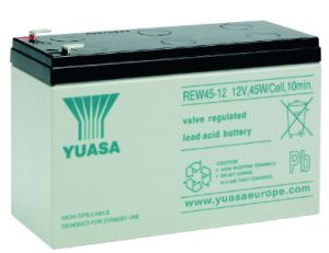 Yuasa 12V9ah 45W UPS Battery Pack Rew45-12 pictures & photos