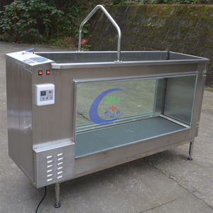Mc-Sc480 (NEW ITEM) Dog Hydrotherapy Treadmill pictures & photos