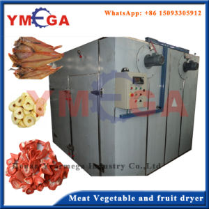 Full Stainless Steel Fruit and Vegetable Processing Dryer Machine pictures & photos