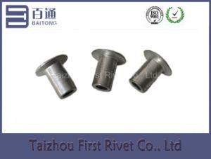 5X9mm Flat Head Semi Tubular Aluminum Rivet pictures & photos