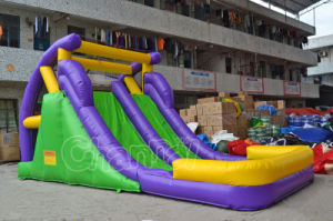 Purple Green Color Backyard Dual Lane Inflatable Water Slide (CHSL386-1) pictures & photos