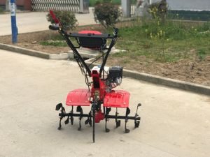 Portable and High Quality Gasoline Power Mini Tiller pictures & photos