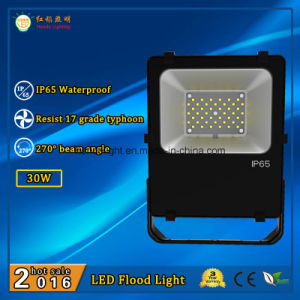 High Quality LED Floodlight 30W IP65 for Outdoor Use with 110lm/W and 270 Degree Beam Angle pictures & photos