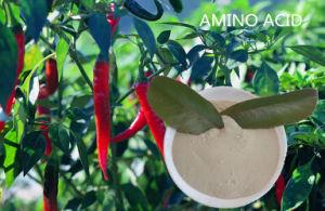 Plant Source Amino Acid Soluble Powder Amino Acid pictures & photos