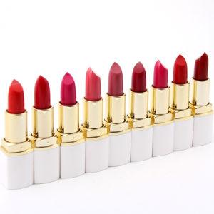 Matte Lipstick 9 Colors Velvet High Quality Waterproof Long Lasting Moisture Beauty Lipsticks Cosmetic Lips Matte Makeup pictures & photos