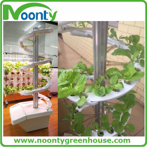 Aeroponics Growing Tower pictures & photos