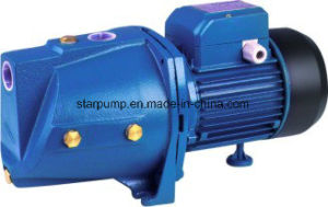 Ce Brass Impeller Centrifugal Electric Water Pump pictures & photos
