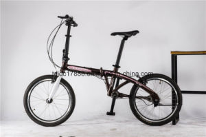 Durable Mini Lightweight Folding Bike/High Efficient Folding Bicycle pictures & photos