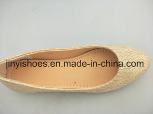 New Style Lady Shoes /Flat Shoes / Hot Sales Shoes/Fashion Sheos/Comfort Shoes pictures & photos