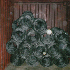 Double Twist Annealed Iron Wire in Bwg18 pictures & photos