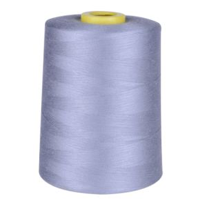 High Quality 100% Spun Polyester 20s/2 Sewing Thread pictures & photos