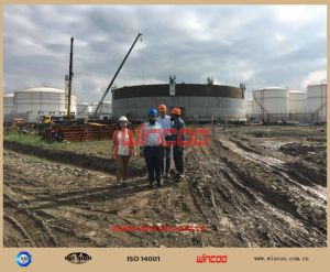 Fgd/LPG Tank/Water Tank Girth Seam pictures & photos