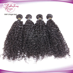 Cuticles Intact Human Hair Curly Virgin Unprocessed Brazilian Hair pictures & photos