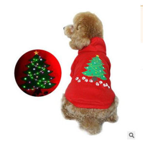 Import Dog Clothes China pictures & photos