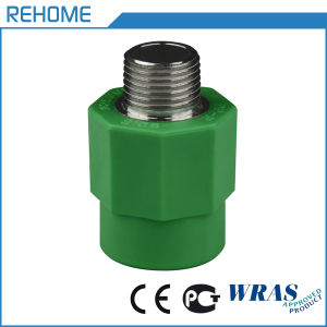 Water Supply 20mm PPR Fitting Male Threaded Coupling pictures & photos