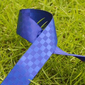 Custom Dyed Decoratiion Webbing Gingham Ribbon for Bow