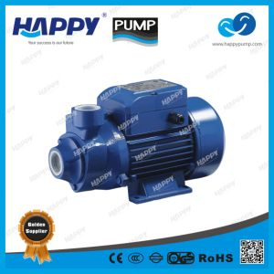 Electric Vortex Water Pump PKM pictures & photos