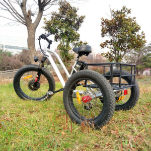 Fat Tire 3wheels Electric Bike Cargo Electric Trike Tricycle pictures & photos