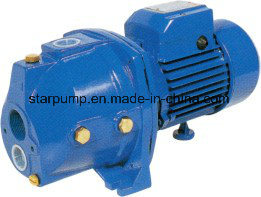 Self-Priming Shallow Well Jet Pump for House pictures & photos