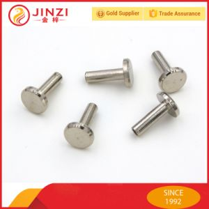 Blind Rivets, Pop Rivets Pyrmaid Rivet, Flat Rivet Made by Brass / Zinc Alloy pictures & photos