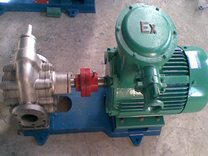 Rotor Gear Pump in Ss Material pictures & photos