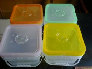 HDPE/PP Food Safe Clear Plastic Storage Container pictures & photos