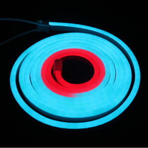 RGB Chasing / Digital LED Neon Flex Light pictures & photos