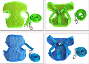 High Quality Dog Harness and Leash pictures & photos