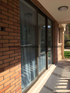 Lift and Slide Door pictures & photos