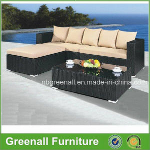 Simple Combination Sale Outdoor Rattan Furniture (GN-9066-2S) pictures & photos