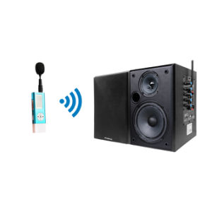 Professional 2.4GHz Wireless Mini Microphone and Black Speaker System pictures & photos