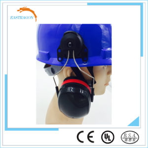 Protector Safety Helmet with Earmuff pictures & photos