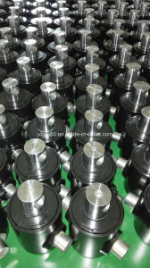 Hydraulic Cylinder for USA Market Custom-Made pictures & photos