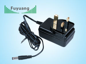 5V3a Switching Adaptor for It Equipment (FY0503000) pictures & photos