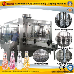 Automatic Pulp Juice Piston Filling Capping Machine pictures & photos