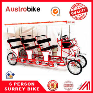 8 Person Bike with Roof Baby Seat pictures & photos