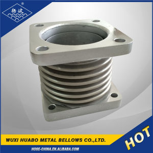 Sorts of Expansion Joints for Building Materials pictures & photos