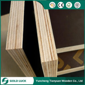 18mm Melamine Glue Shuttering Poplar Board Film Coated Plywood pictures & photos