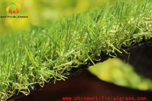 PE Pet Artificial Grass and Synthetic Turf Without Heavy Metals pictures & photos