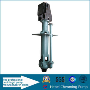 Centrifugal Theory Abrasion Resistant Vertical Phosphate Slurry Pump pictures & photos