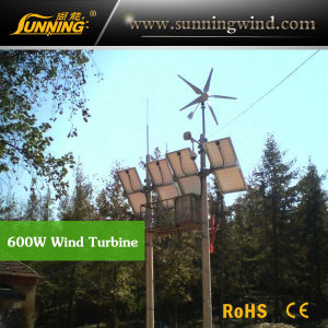 Residential Wind Generator 600W Wind Turbine Generator Home Use pictures & photos